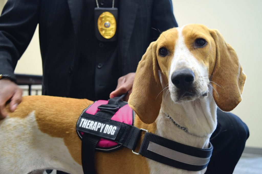 Line of Duty LOD Charity Pet Therapy Dog